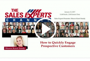 Bright Talk Webinar How to Quickly Engage Prospective Customer Shawn Karol Sandy The Selling Agency