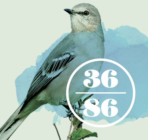 3686 is the latitude and longitude of Nashville and the Mockingbird is the state bird of TN