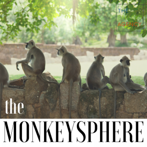 What do Monkeys have to do with Relationship Selling?