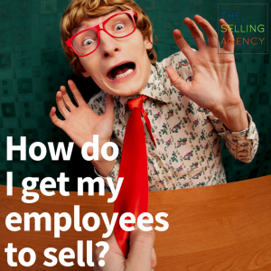 Small Business, Employees sell, Motivate, Selling Organization