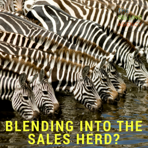 Dear Salesperson: Your Sales Messages Are Crap - sales pro-email-cold call-voicemail-phone blitz-annoying-messages-communication
