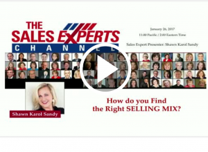 Bright Talk Webinar How do you find the right selling mix Shawn Karol Sandy The Selling Agency