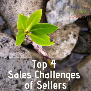 What Are The Top 4 Sellers Sales Challenges