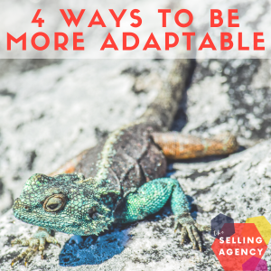 4-Attributes-to-help-you-be-more-adaptable