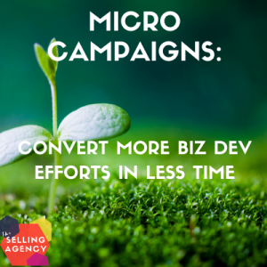 Build a Micro Campaign for Business Development